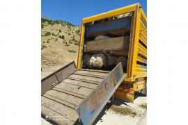 Küçük baş hayvan taşımacılığı