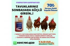 FARMATOM ( Tavuklarınız sonbahara güçlü girsin )