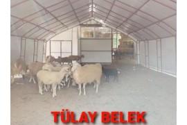 Hayvan çadır barınakları istenilen genişlik ve uzunlukta yapılır